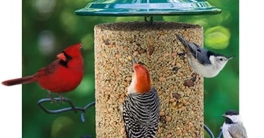 Image result for birdfeeder frenzy